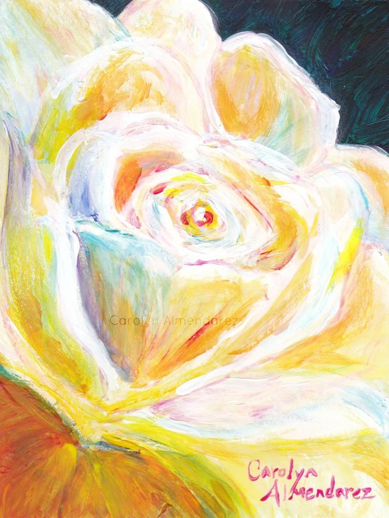White Rose Carolyn Almendarez