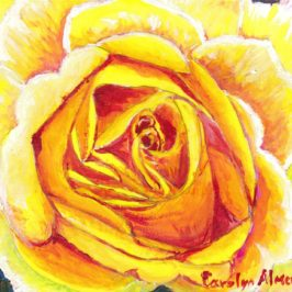 Yellow Rose Carolyn Almendarez