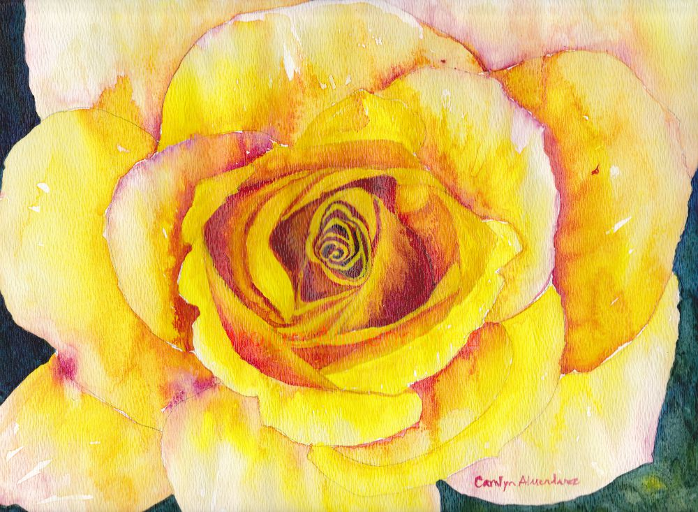 Yellow Rose Watercolor by Carolyn Almendarez