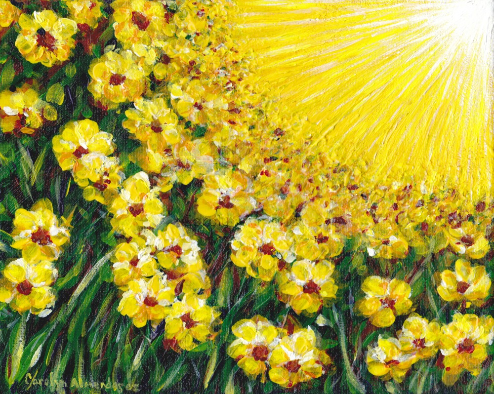 Field of Yellow Flowers Carolyn Almendarez