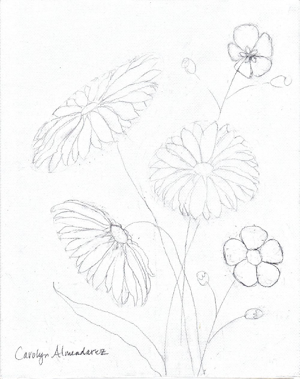 Wildflowers Carolyn Almendarez 090415